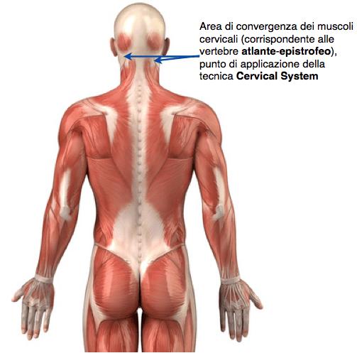 Dolore del collo e di mascella superiore