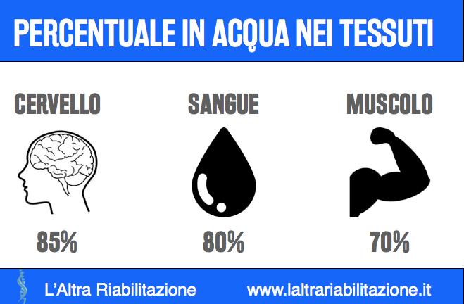Acqua infografica