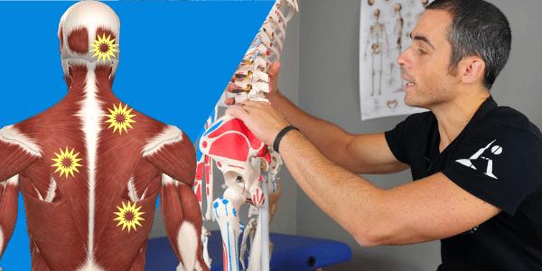 Dolori muscolari diffusi e metabolismo: l'importanza di un approccio globale