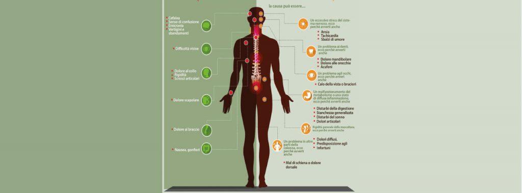 La cervicale spiegata (infografica)