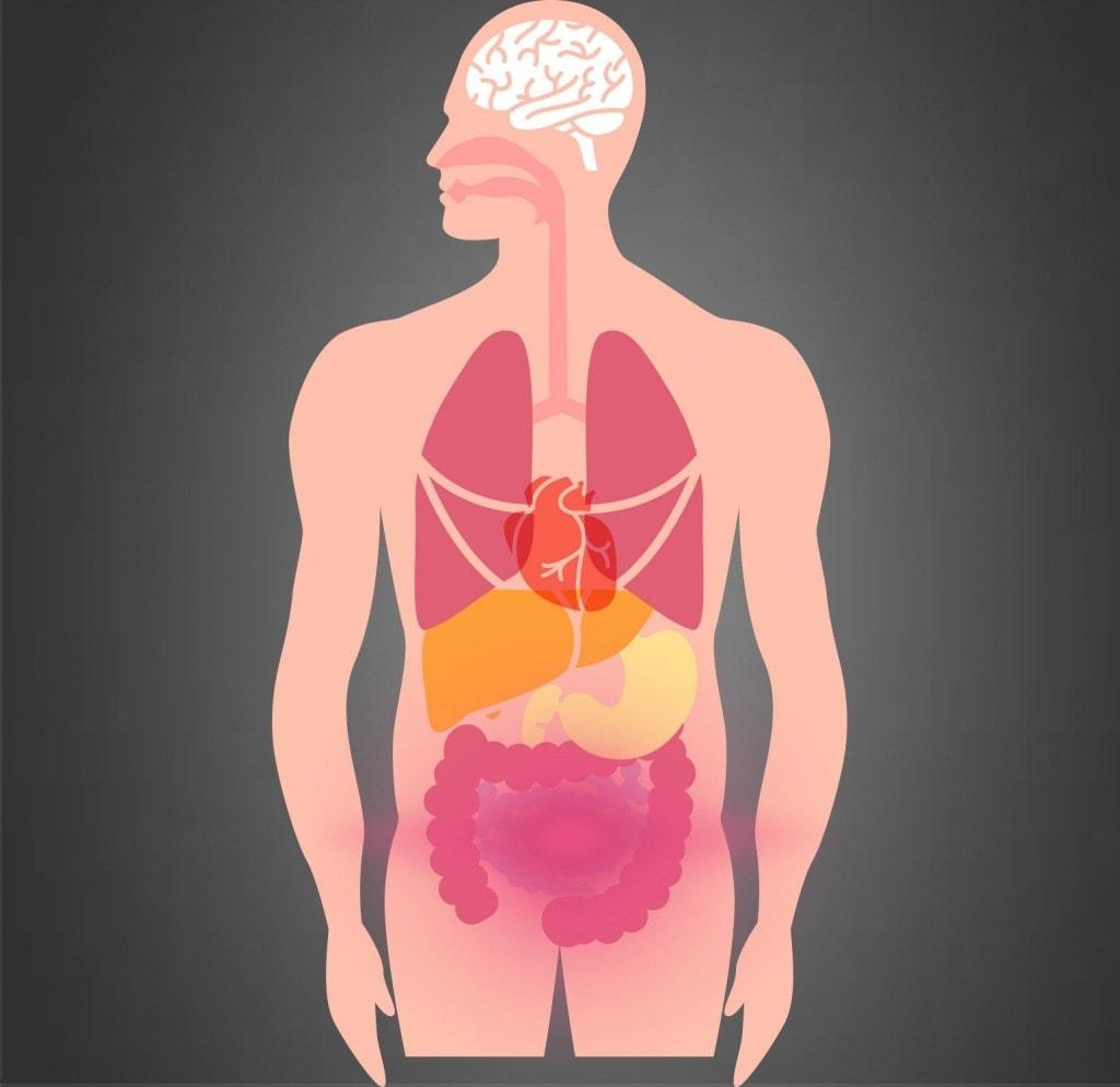 sentirsi gonfio dopo il turno di notte problemi intestinali anni dopo listerectomia