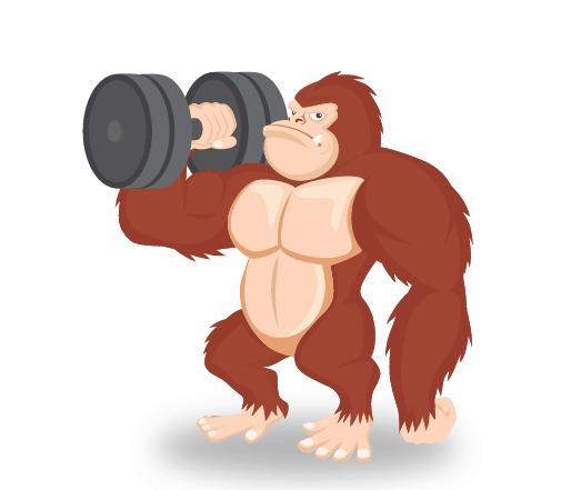 gorilla exercice