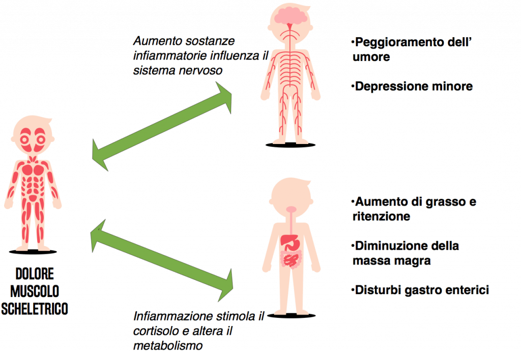 sintomi muscolo scheletrici collegati