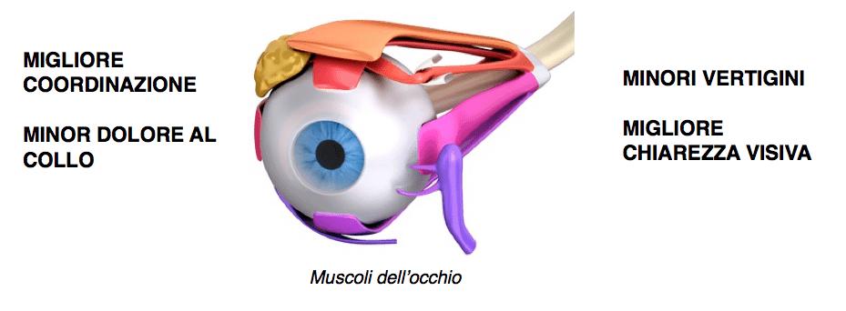 vertigini muscoli occhio