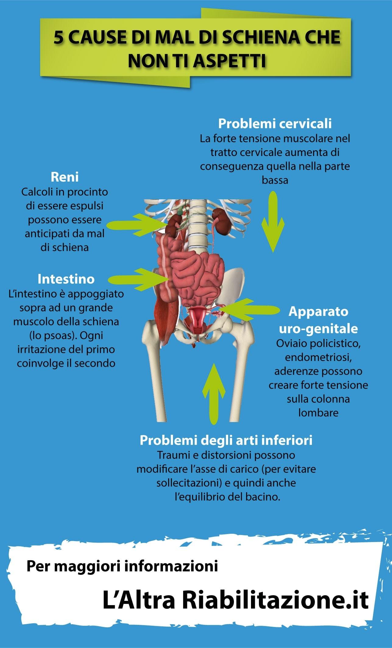 5 cause inusuali di mal di schiena sulle quali puoi riflettere l 39 altra riabilitazione - Mal di schiena a letto cause ...