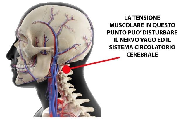 cervicale-nervo-vago