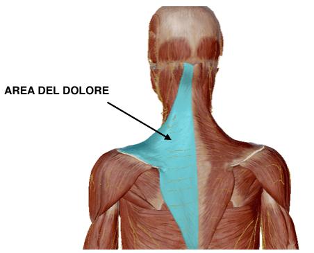 tensione colonna vertebrale