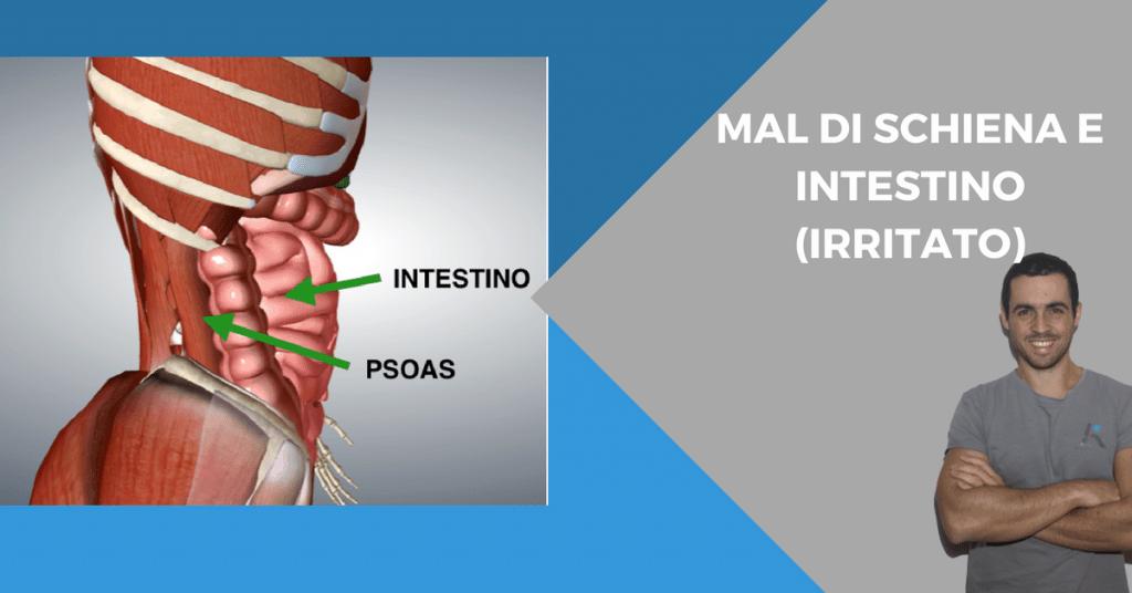 Mal di schiena: quando la causa è in realtà nell'intestino (irritato).