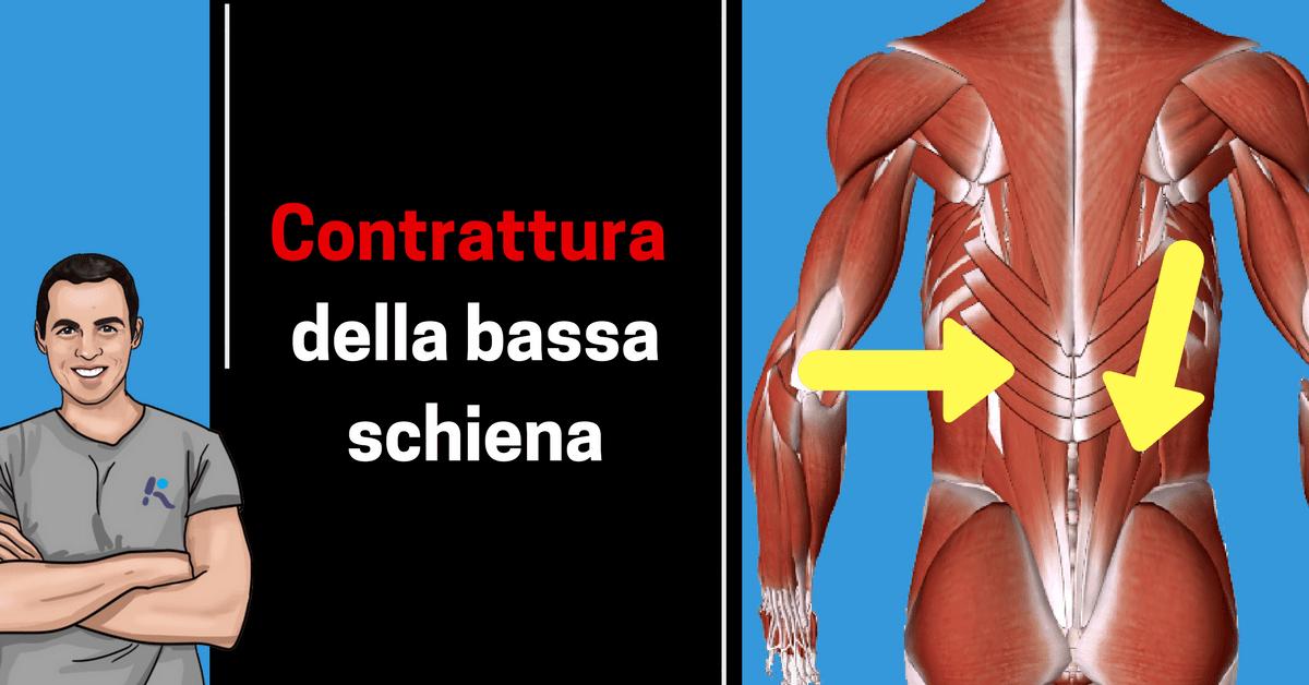 Contrattura muscolare alla bassa schiena: ecco cosa si può..