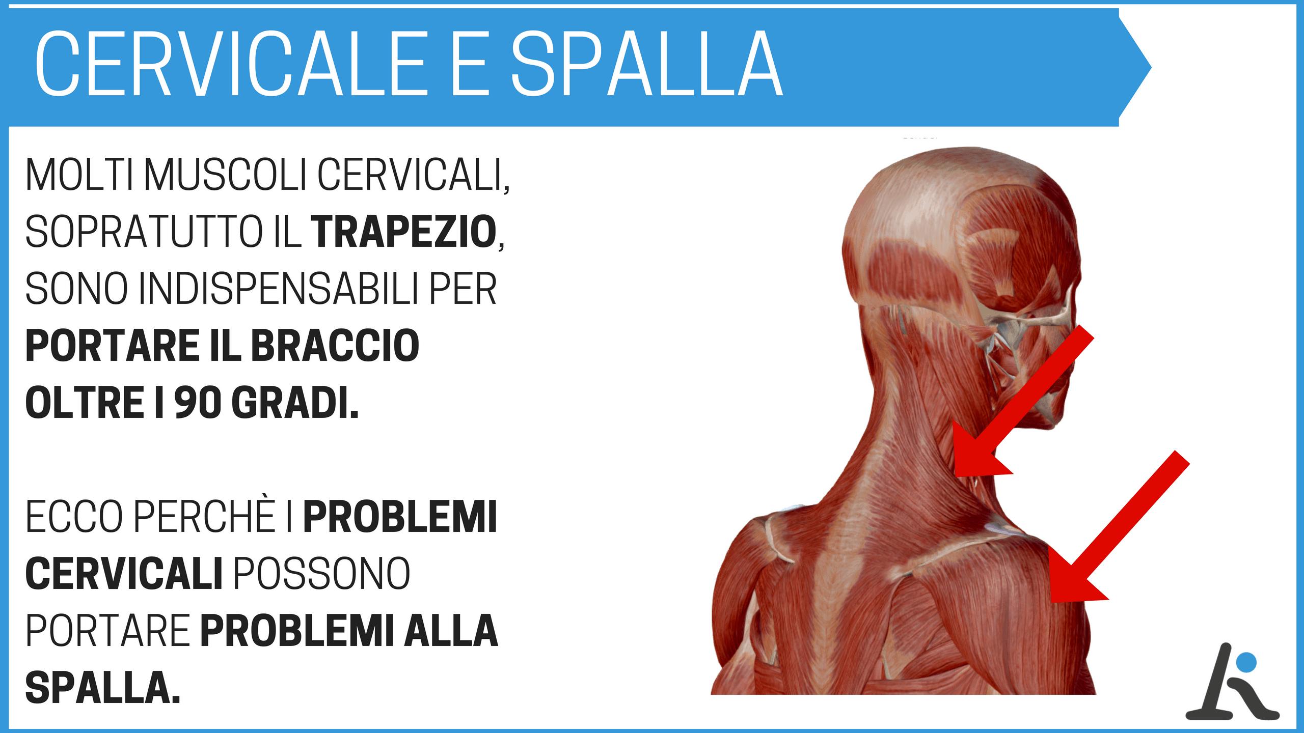I problemi cervicali possono causare dolori alla spalla
