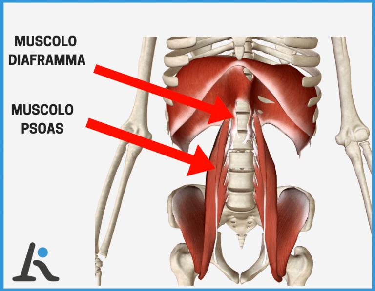 Stanchezza e dolori muscolari: le cause possibili