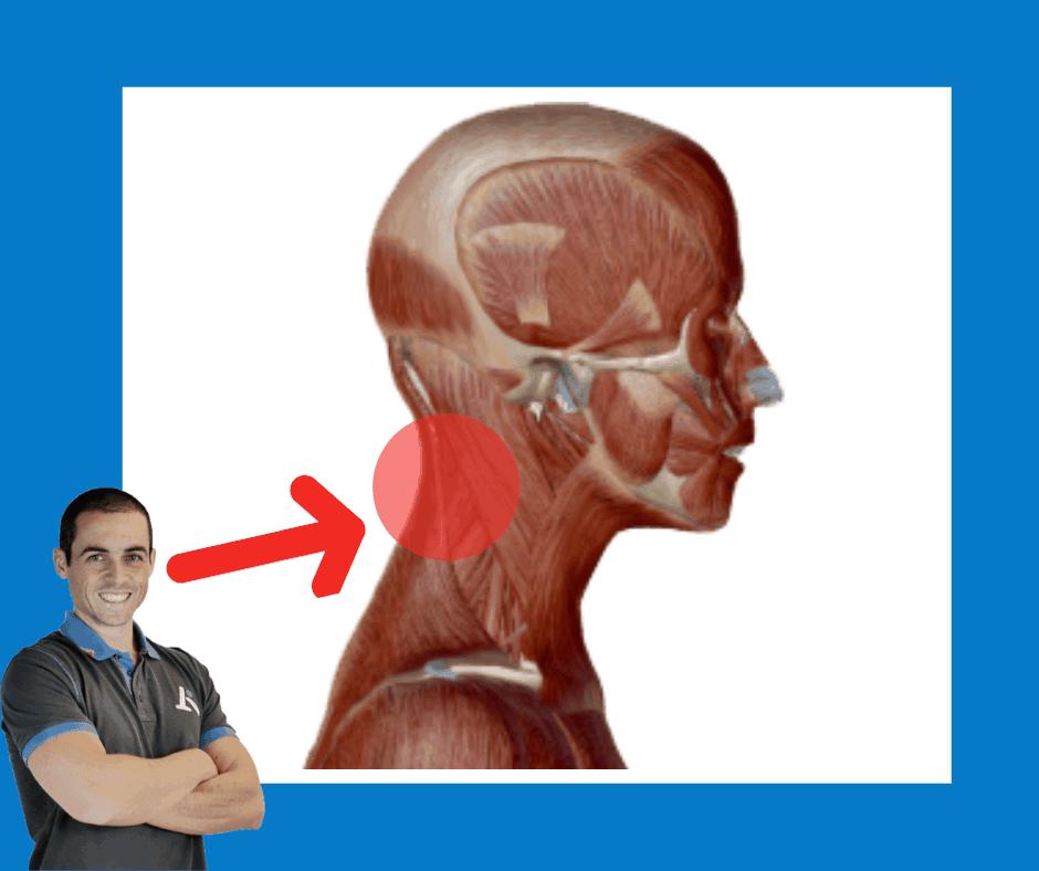Dolore cervicale - disturbo cervicale