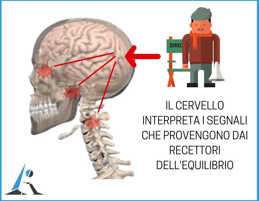 i segnali del cervello
