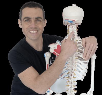 marcello vertebra
